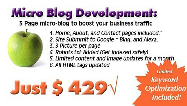 micro blog development offer